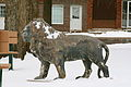 Pleasantville Iowa 20080111 Lion.JPG