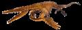 Plotosaurus LACM.png