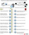 Podstawowe praktyki zabezpieczania serwisów internetowych przed włamaniami.png