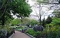 Pollinator Garden in April (17427433650).jpg