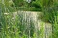 Pond at Astrop - geograph.org.uk - 1381596.jpg