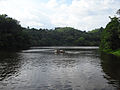 Pookode Lake, Wayanad.JPG