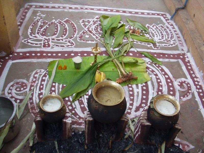 Preparation of Pongal