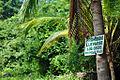 Prohibido llevarse los cocos (4167790884).jpg