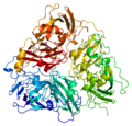 Protein CP PDB 1kcw.png