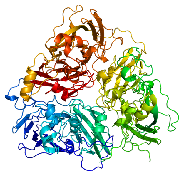 [Image: 626px-Protein_CP_PDB_1kcw.png]