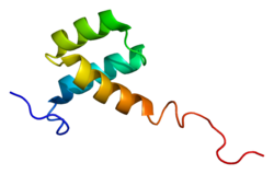 Protein HOXA5 PDB 1hom.png