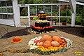 Pumpkins galore (SG) (16194624656).jpg
