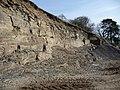 Quarry on farm track, - geograph.org.uk - 1800216.jpg