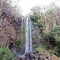 Queen Mary Falls, Queen Mary Falls National Park, Queensland, Australia.JPG