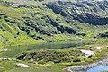 Réserve Naturelle de Passy - panoramio (20).jpg
