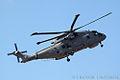 RAF Team Merlin (8643276366).jpg