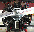 Radial engine WACO QCF2.jpg