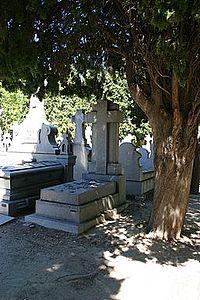 Ramon y Cajal's tomb.jpg