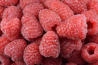 Raspberry Edible fruit