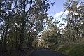 Razorback NSW 2571, Australia - panoramio (4).jpg