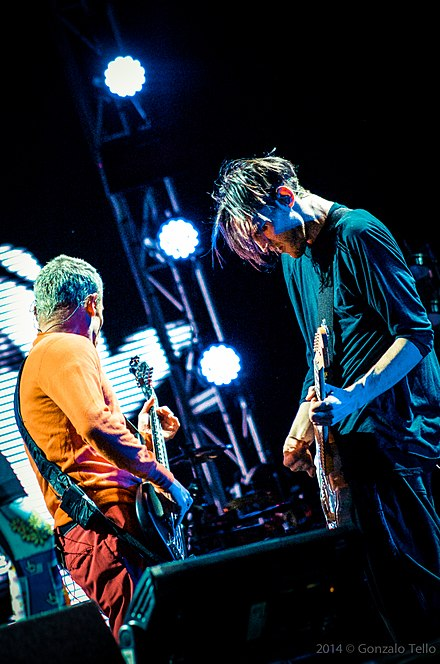 With RHCP bassist Flea, at Lollapalooza Chile, 2014 Red Hot Chili Peppers - Lollapalooza Chile 2014 (13678546523).jpg