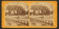 Residence of Prof. & Mrs. H.B. Stowe, from landing, from Robert N. Dennis collection of stereoscopic views.png