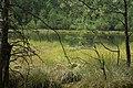 Rezerwat przyrody Dury.JPG