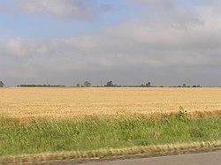 Rice County P5310409.JPG