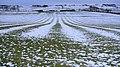 Ridge and furrow ploughing east of Sandybraes - geograph.org.uk - 1154094.jpg
