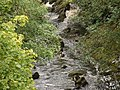 River Conwy - geograph.org.uk - 52319.jpg