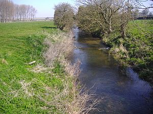 River Stiffkey - Image: River Stiffkey 5th April 2007 (10)