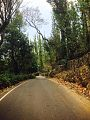 Road to Shri Chakra Maha Meru Temple and he Shevaroy or Servarayan Temple, situated at the highest point in Yercaud (5,326 ft).jpg