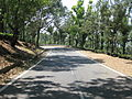 Road view to and from OOTY (176).JPG