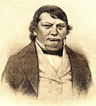 Jean-Baptiste Robineau-Desvoidy - Image: Robineau Desvoidy 1799 1857 (cropped)