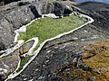 Rockpool, Loch Caolisport - geograph.org.uk - 824096.jpg