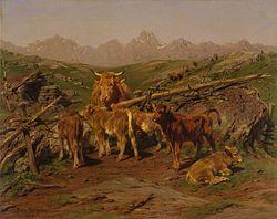 روسا بونهور: Weaning the Calves