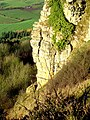 Roulston Scar close up - geograph.org.uk - 165052.jpg