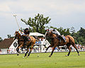 Royal Berkshire Polo Club.jpg