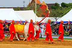 Royal ploughing ceremony day 23.jpg