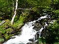 Ruisseau de Coume Nère Cazeaux amont.JPG