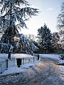 Ruskin Park in the snow (8403909482).jpg