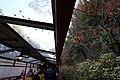 Sagano Scenic Railway train interior 171205 (24204034997).jpg