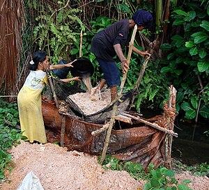 Simeulue - Washing the pith of sago palm (Metroxylon sagu); Simeulue