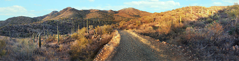 File:Saguaro National Park Panorama.jpg