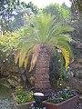 Saint-Jacut-les-Pins - Tropical Parc (59).jpg