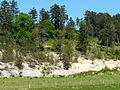 Sainte-Marie-de-Chignac nature.JPG