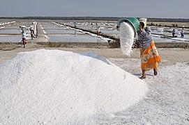 Salt workers of Marakkanam.jpg