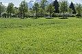 Salzburg-2600.jpg