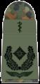 SanL 251-Oberstabsarzt-(Humanmedizin).png