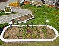 Schaugärten in den Rosenobelgärten.jpg