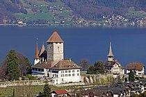 Schloss Spiez von oben.JPG