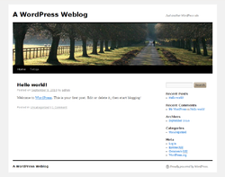 WordPress 3.0.1:n oletusulkoasu.