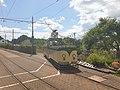 Seaton tram 4 at Colyton 2021-07-13 13.29.52.jpg