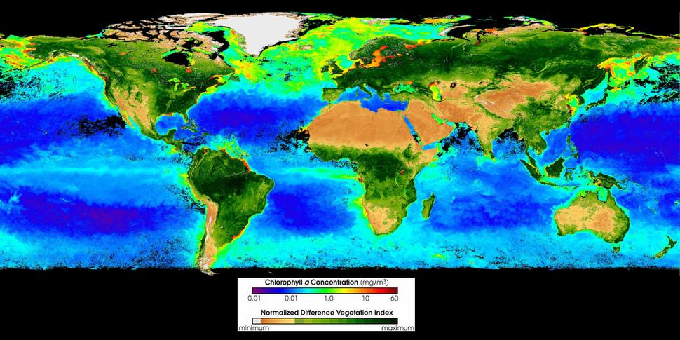 Seawifs global biosphere 2002